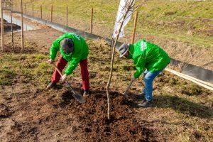 GroenLinks pote hun boom